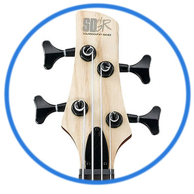 Electric Bass Guitar & Upright Bass